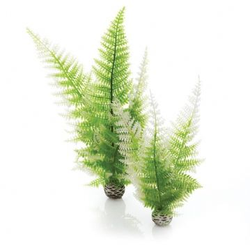 Biorb Aquatic Winter Fern